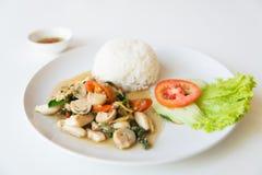 Рис и зажаренный stir гриб стоковая фотография