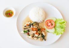 Рис и зажаренный stir гриб стоковая фотография rf