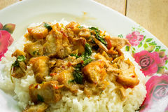 Рис и карри (базилик) stir Таиланд Стоковые Изображения RF