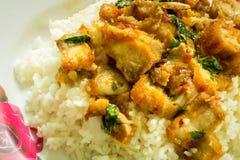 Рис и карри (базилик) stir Таиланд Стоковое Изображение RF