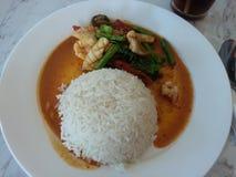 Рис и карри стоковые изображения
