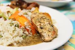 Рис и куриная грудка стоковое изображение rf