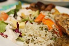 Рис и куриная грудка стоковые изображения