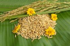 Рис и цветок на зеленых листьях Стоковое Фото