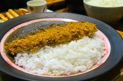 Рис карри Katsudon японца Стоковая Фотография RF