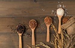Рис на ложке на древесине Стоковые Фото