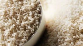 Рис на рисе плиты типичном тайском Стоковое фото RF