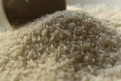 Рис на рисе плиты типичном тайском Стоковое Изображение