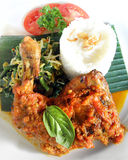 рис ноги тарелки цыпленка Стоковая Фотография RF