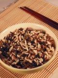 рис одичалый Стоковая Фотография