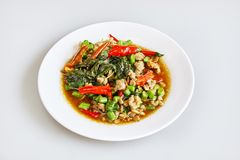 Рис покрыл с stir-зажаренными свининой и базиликом, тайской традиционной едой, тайской местной едой - взгляд сверху стоковые фотографии rf