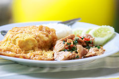 Рис покрыл с омлетом и stir-зажарил свинину и базилик стоковое фото