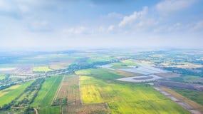 рис полей зеленый Стоковое Фото