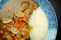 Рис с взгляд сверху карри свинины Стоковая Фотография RF