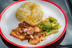 Рис с мясом в соевом соусе Стоковое Изображение
