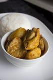 Рис цыпленка карри Стоковое Изображение RF