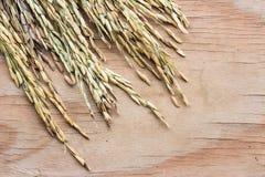Рис шипа на деревянной предпосылке Стоковое Изображение RF
