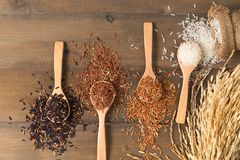 Рис ягоды риса, коричневых и тайских красный смешанный на коричневом деревянном backg Стоковое Изображение RF