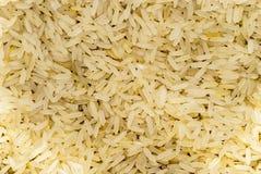 рис 2 Стоковые Изображения RF