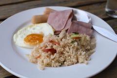 рис international еды цыпленка Стоковое фото RF