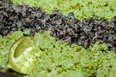 Рис Salade Стоковые Изображения RF