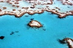 риф барьера Австралии большой Стоковая Фотография