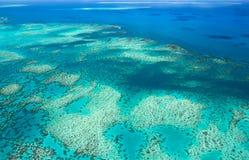 риф барьера большой стоковые фото