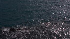 Риф в море сток-видео