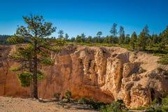 Риф капитолия и каньон Bryce Стоковое Фото