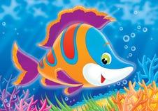 риф 02 бесплатная иллюстрация