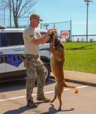 Ричмонд, KY США - 31-ое марта 2018 - пасха Eggstravaganza офицер K9 демонстрирует собачьи методы и учебные упражнени стоковые фото