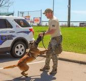 Ричмонд, KY США - 31-ое марта 2018 - пасха Eggstravaganza офицер K9 демонстрирует собачьи методы и учебные упражнени стоковое фото rf