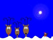 робин северных оленей Стоковая Фотография RF