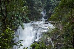 Ровное движение водопада Стоковые Изображения