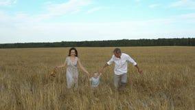 Родители и ребенок бегут через пшеницу на поле Стоковое Изображение RF