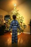 Рожденственская ночь Стоковые Фотографии RF