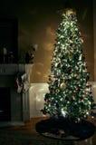 Рожденственская ночь стоковое изображение