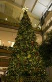 Рождественская елка в моле Стоковые Изображения