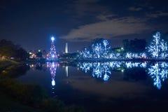 Рождественская елка в парке Ibirapuera в городе Сан-Паулу стоковое изображение