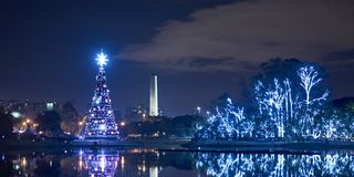 Рождественская елка в парке Ibirapuera в городе Сан-Паулу стоковая фотография rf