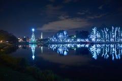 Рождественская елка в парке Ibirapuera в городе Сан-Паулу стоковые фотографии rf