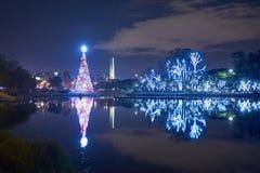 Рождественская елка в парке Ibirapuera в городе Сан-Паулу стоковые фото