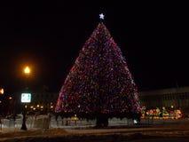 Рождественская елка на квадрате Клинтон стоковое изображение