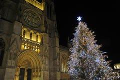 Рождественская елка перед Бордо собором, Францией стоковая фотография