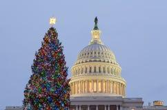 Рождественская елка перед капитолием Вашингтоном Стоковое Изображение RF