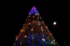 рождественская елка предпосылки черная Стоковые Изображения