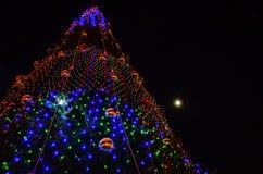 рождественская елка предпосылки черная Стоковые Изображения RF