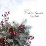 рождественская елка предпосылок Стоковое Изображение
