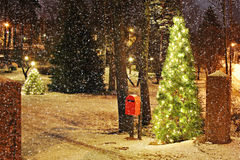 Рождественская елка с светами Стоковое Изображение RF