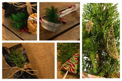 Рождественская елка с украшением и конфетой Стоковое фото RF